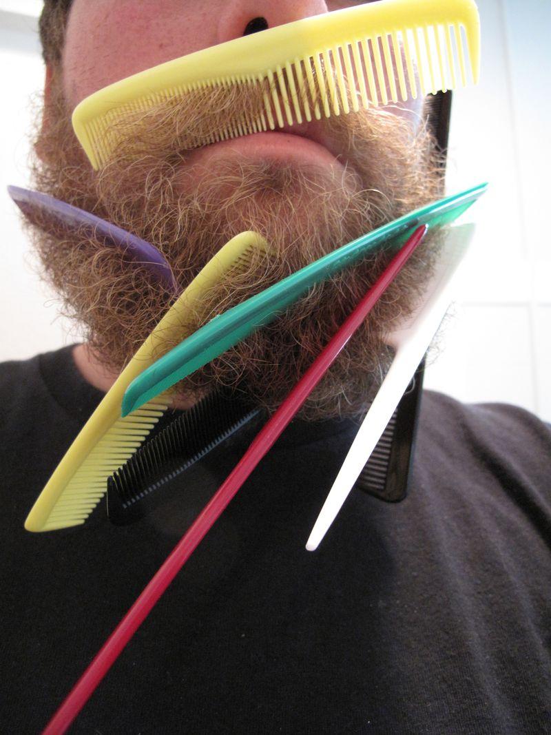 Beard-sculpture-1