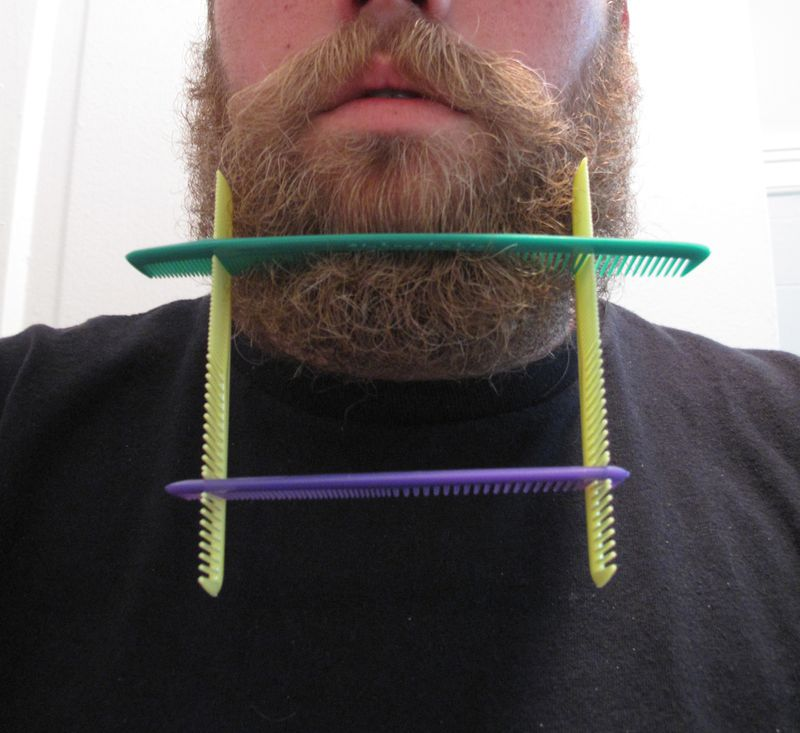 Beard-sculpture-2