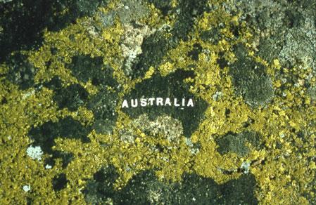 Moss-Maps-Australia