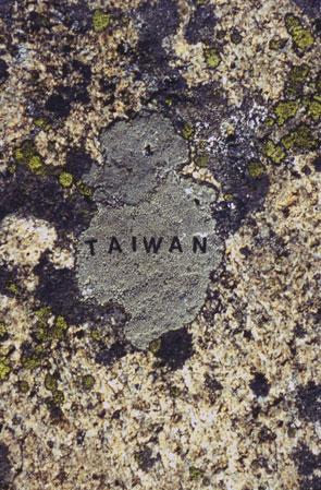 Moss-Maps-Taiwan